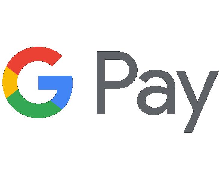 Google pay Icon